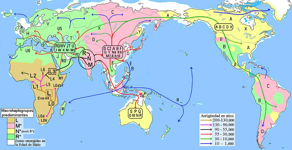 Mapa de migraciones
