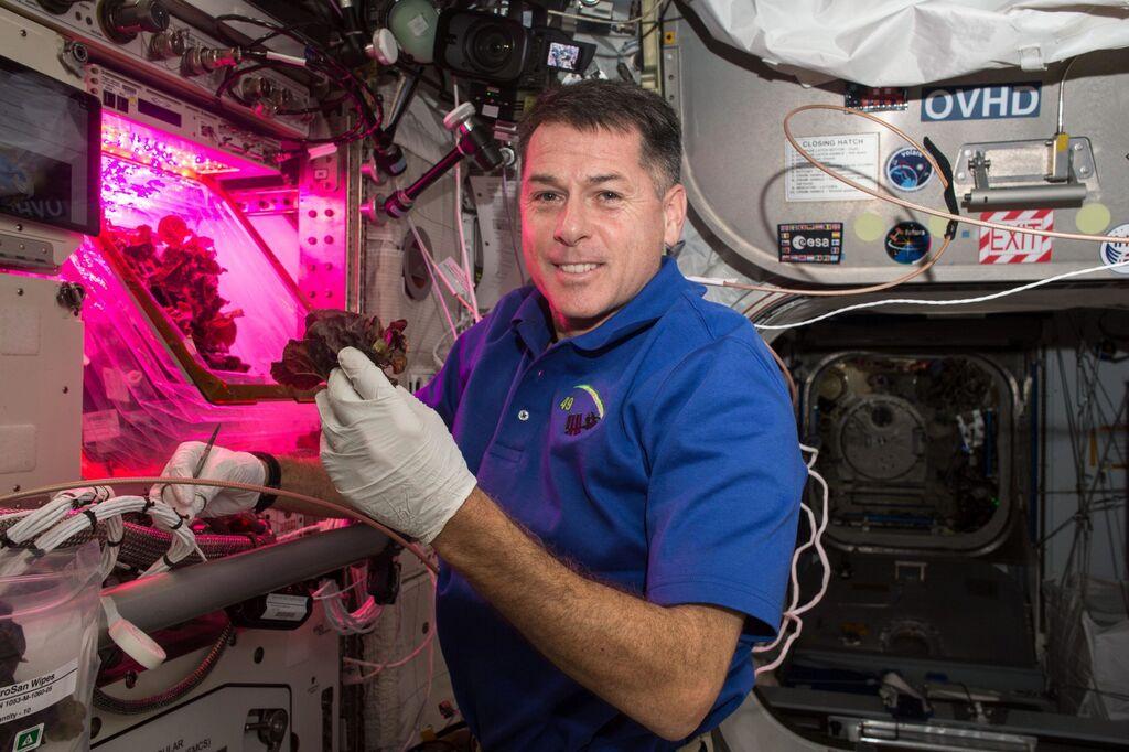 Shane Kimbrough, miembro de la expedición 49/50, posa con una lechuga frente al módulo 'Veggie' de la Estación Espacial Internacional, en una misión del 2016